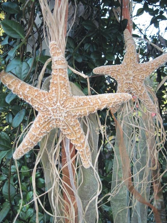 Starfish Decorations
