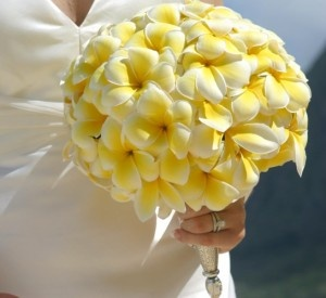 Plumeria Wedding Bouquet