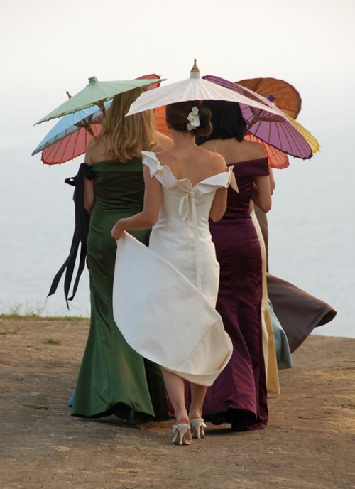 Wedding Parasol Photo