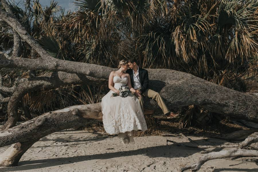 Amazing Beach Wedding and Engagement Photos