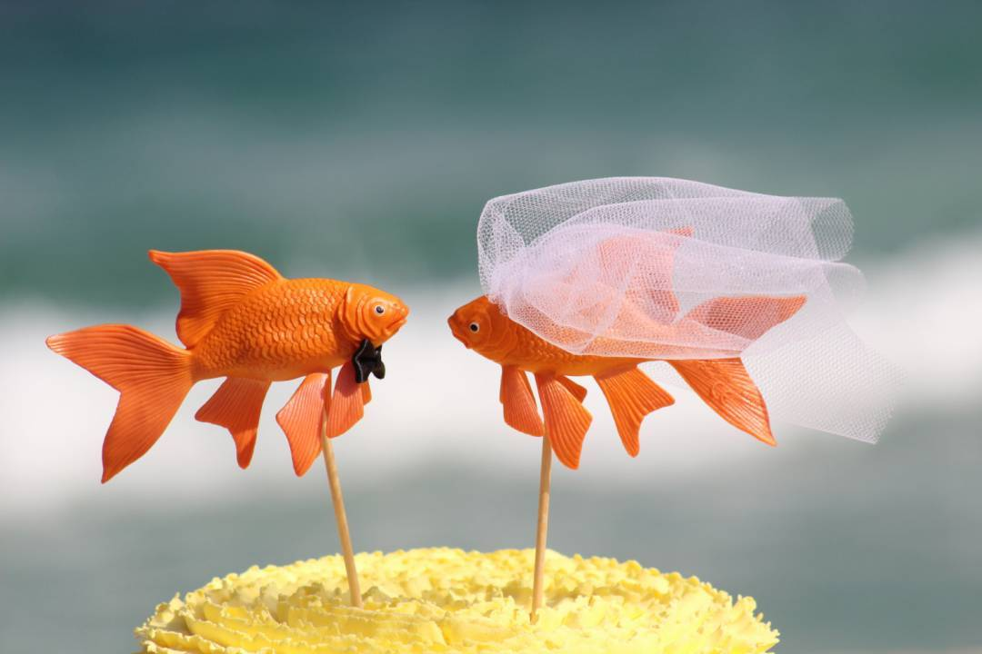 7 Clever Adorable and Hilarious Beach Wedding Cake Toppers