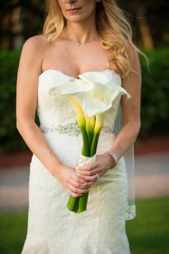 Anita & Brians Wedding