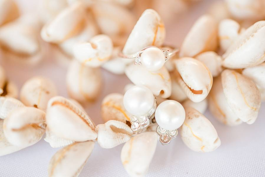 Seashells and Surf Boards